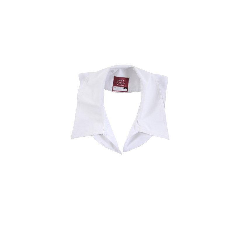 Dress Collar - Clearance